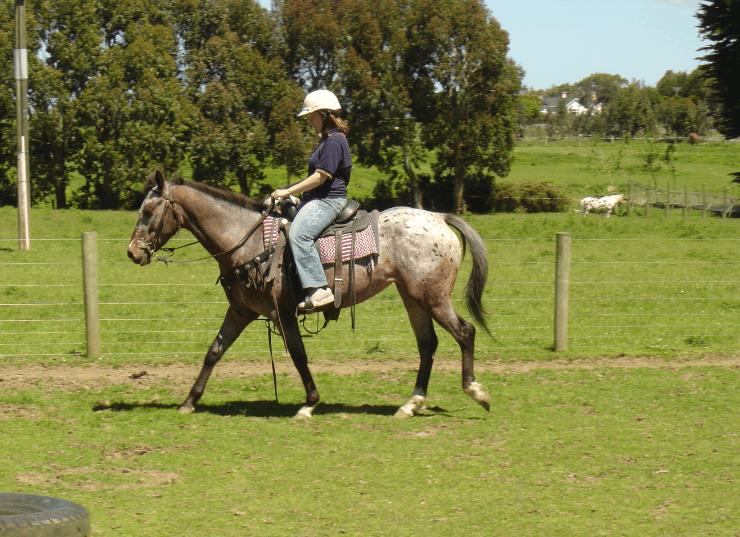 Mararoa Bobbie Jane